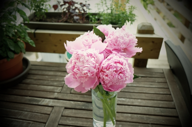 2015-03-Life-of-Pix-free-stock-photos-bouquet-pink-flower-table-julien-sister