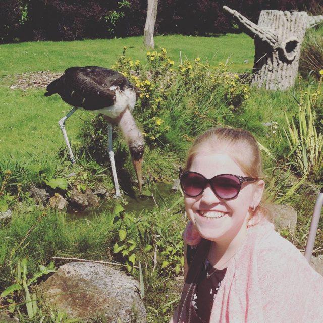 Dagje in de dierentuin geweest vandaag met zus en zwagerlief!hellip
