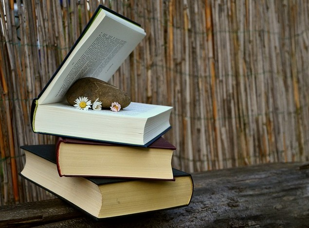 books-676425_640